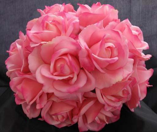 86433d1320999651-pink-roses-pink-roses-image