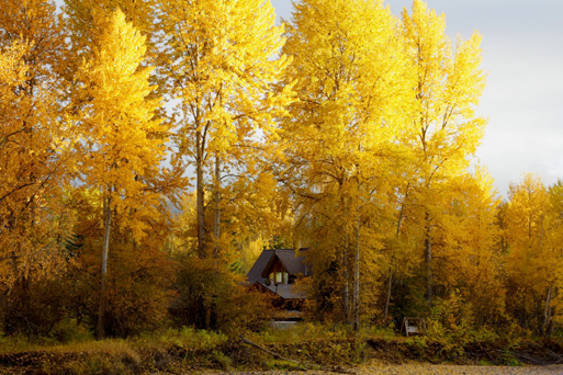 small-modified-a-frame-on-the-flathead-river-near