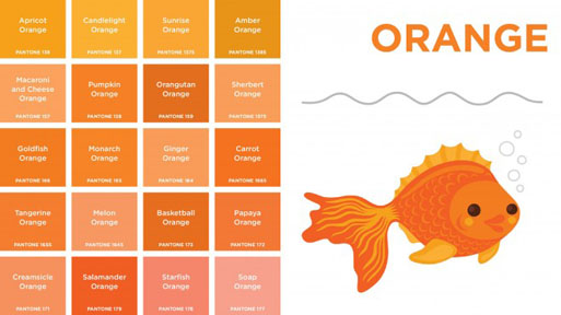 Pantone-orange-660x371