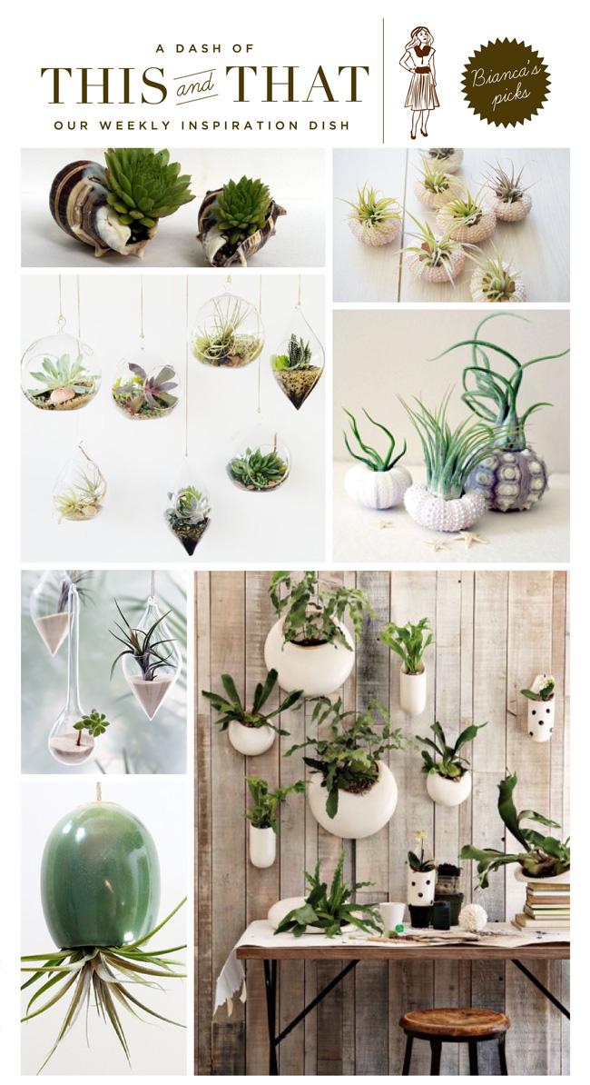 CutePlants